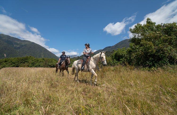 Experience Fox Glacier Horse Riding (29).jpg
