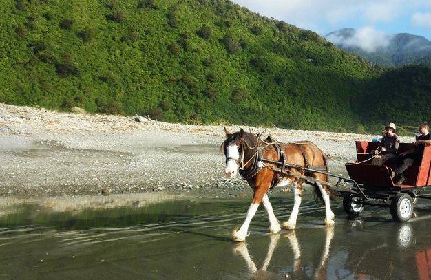 Horse wagon tours1.jpg