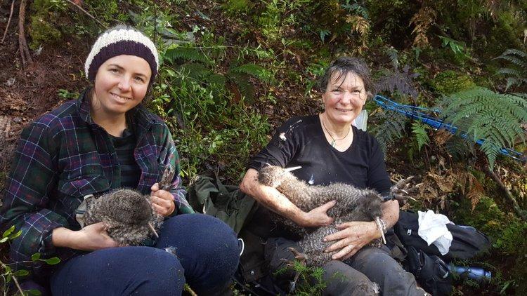 Paparoa Wildlife trust finalist.JPG