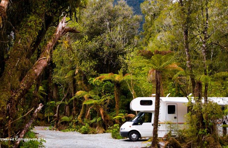 Rainforest_Images_12.jpg