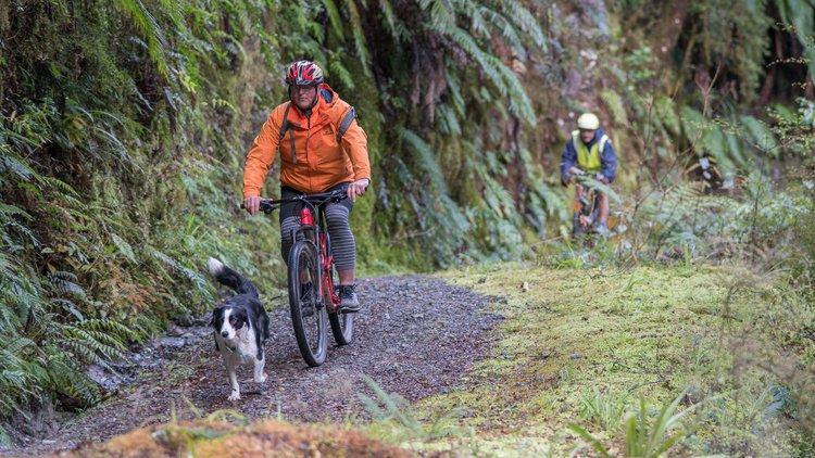 Reefton Mountain Biking