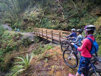 Reefton mountain biking_DSC3794