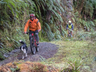 Reefton mountain biking_DSC3869