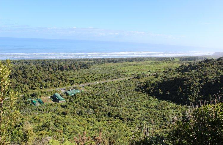 Punakaiki Coastal Restoration Project