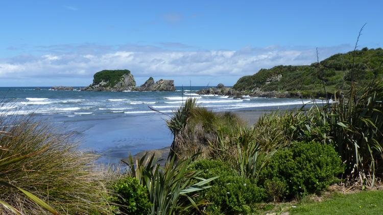 Tauranga_Bay_Seal_Colony,_New_Zealand_(11).jfif
