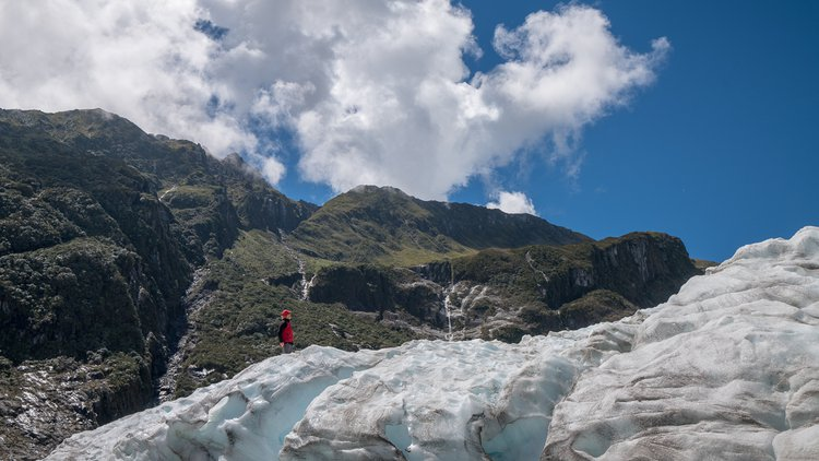 Tourism West Coast - Fox Glacier (80).jpg