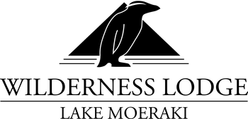 WLLM Logo (1).png