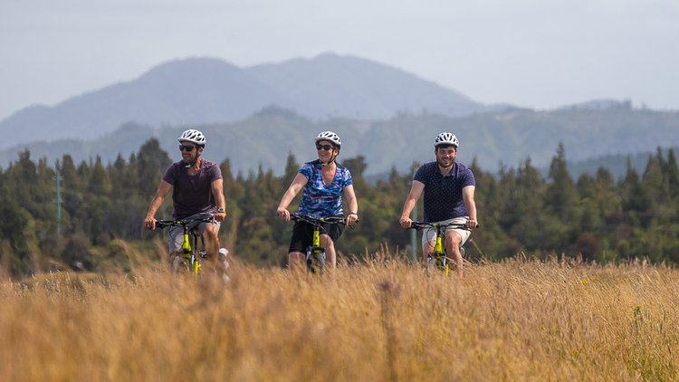 West Coast Wilderness Trail - Cycle Journeys (2).jpg