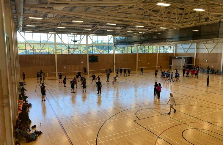 Westland rec volley ball.jpg