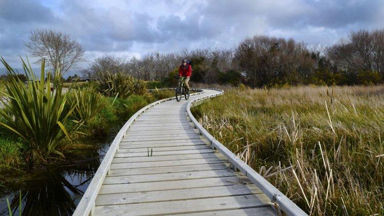 Mountain Bike North Beach Reserve Westport New Zealand