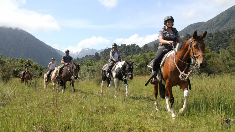 Horse trekking over farmland
