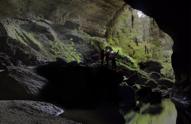 Gloworm Cave Tour