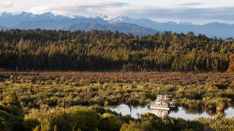 The untamed natural wilderness of the West Coast