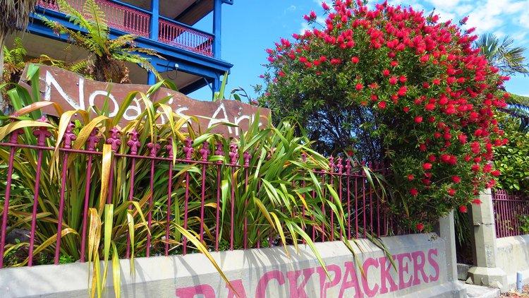Noah's Ark Backpacker Hostel