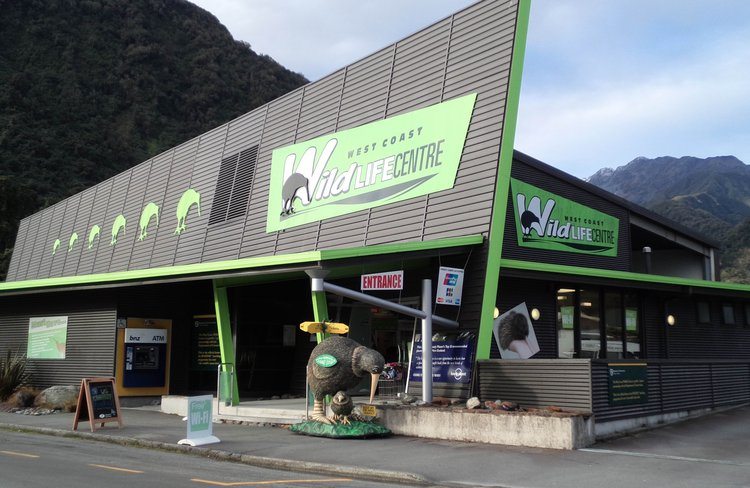 """Look out for the bright """" Green """" building in Franz Josef !"""