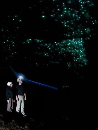 Sparkling glowworm display inside the Nile River Glowworm Cave